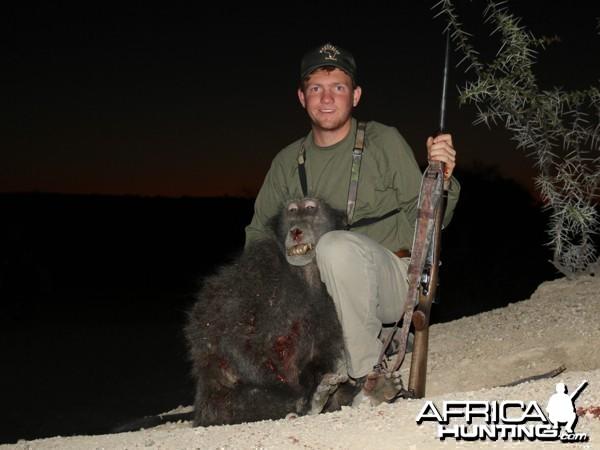 Chacma Baboon hunted at Westfalen Hunting Safaris Namibia