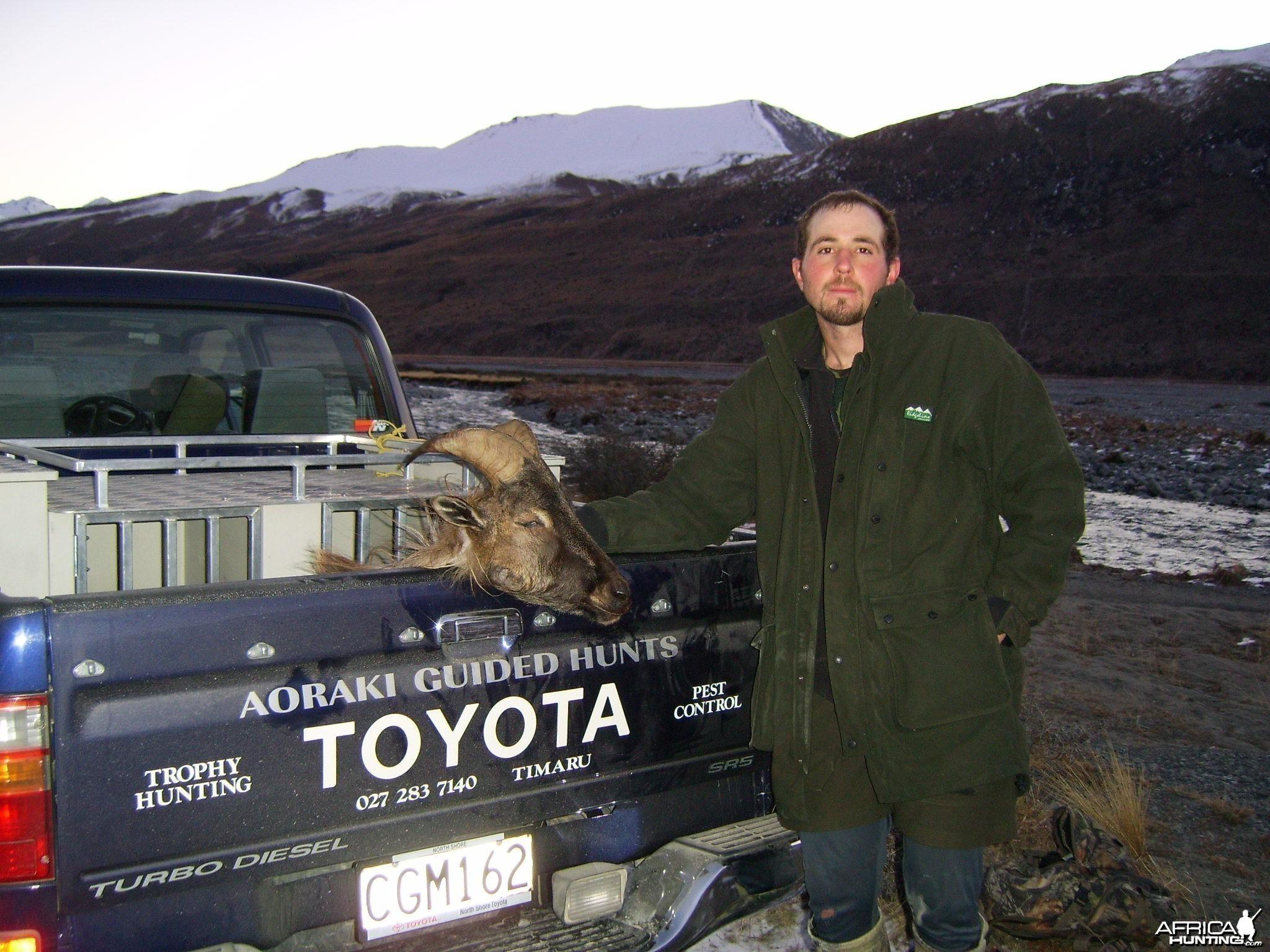 Hunting Thar New Zeland