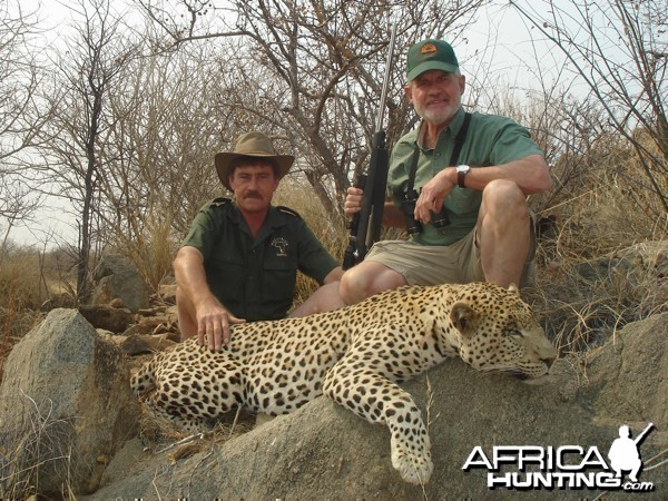 Leopard hunted with Westfalen Hunting Safaris in Namibia