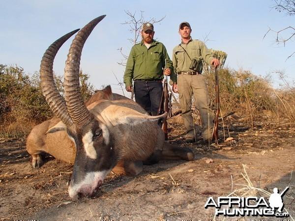 Roan - Bullet Safaris