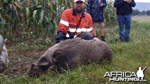 Umdende Clayton Comins Hunting Safaris