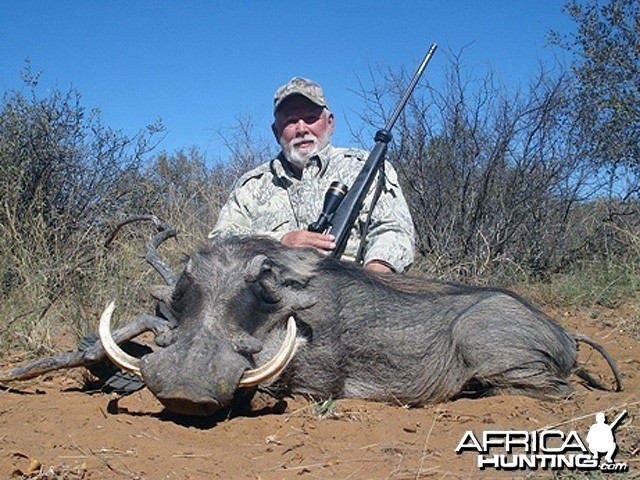 Hunting Warthog South Africa