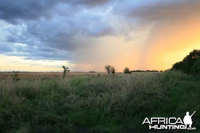Hunting Tanzania... Kilombero