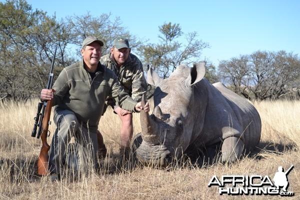 Darted Rhino