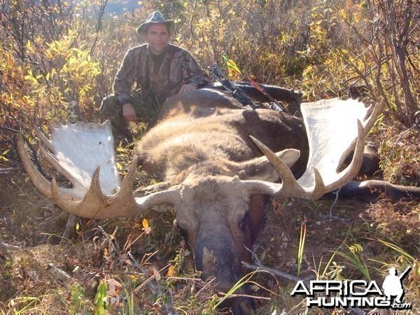Moose Alaska 2010