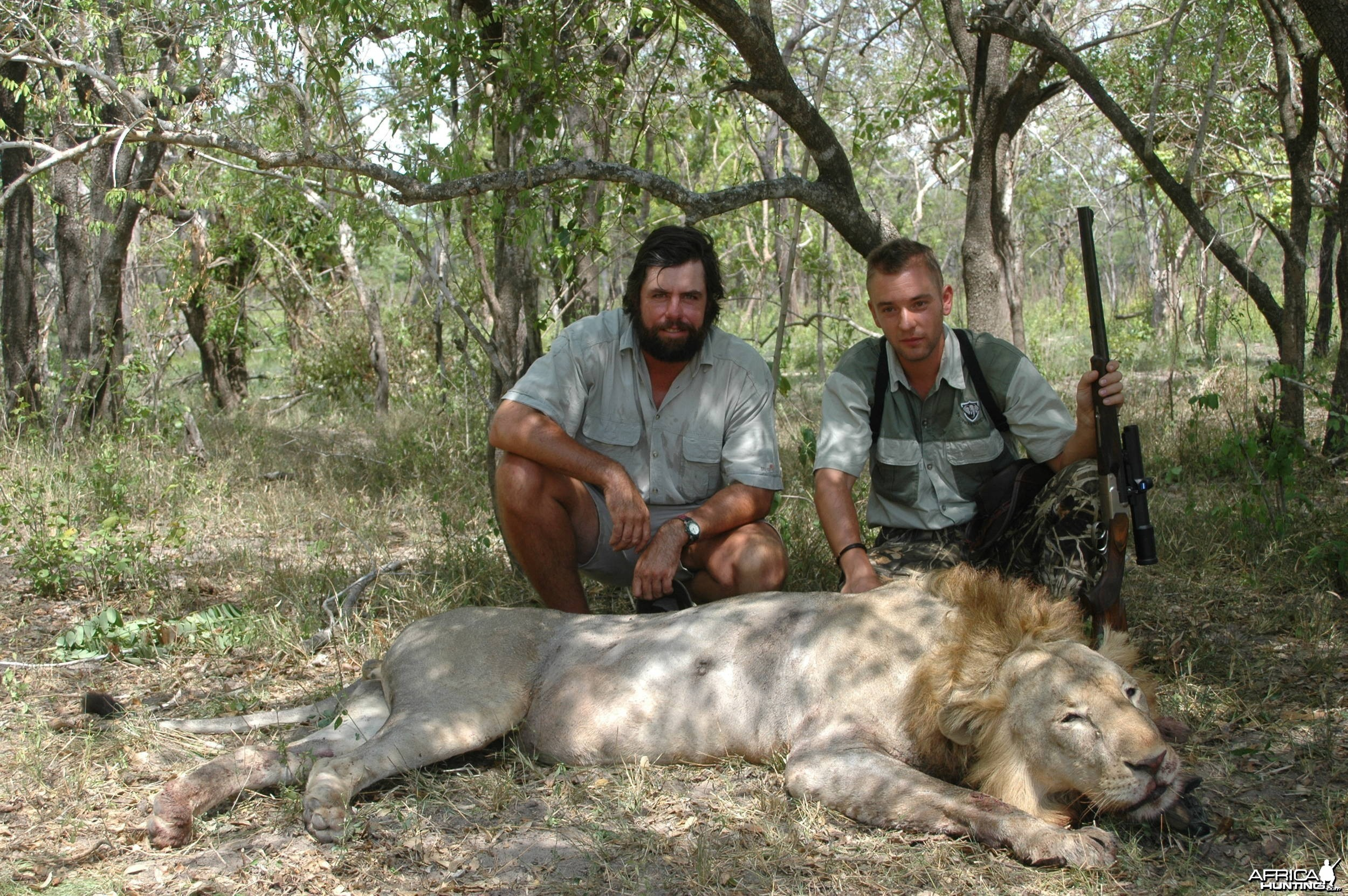 Hunting Lion - Selous Game Reserve
