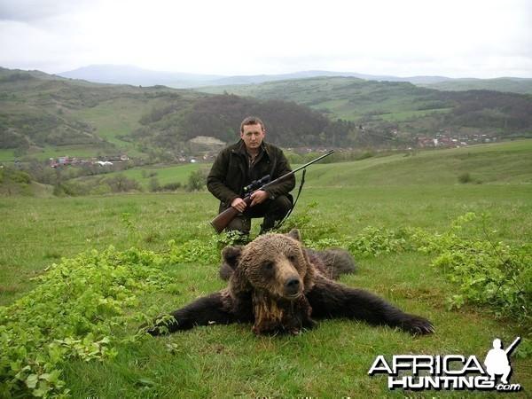 Hunting Brown Bear in Romania