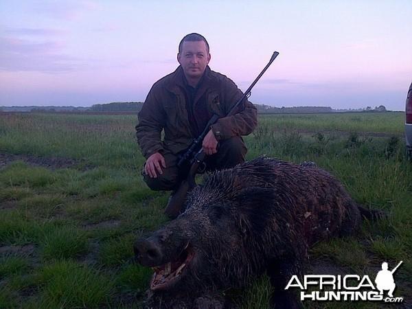 Hunting Boar in Romania