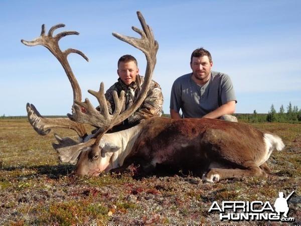 Caribou Manitoba 2012