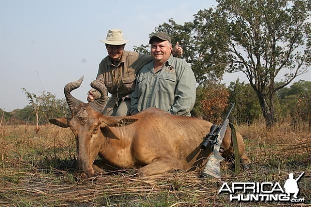 Lichtenstein's Hartebeest hunting in Tanzania