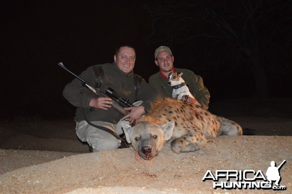Hyaena hunt
