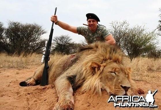 Lion hunt South-Africa