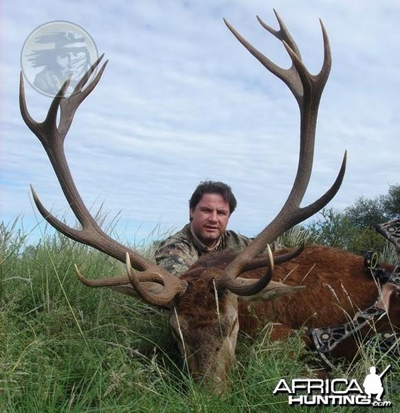 Argentina - La Pampa - Red Stag at Poitahue Hunting Ranch