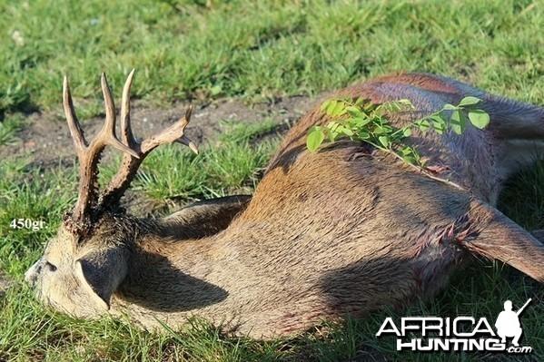 450gr. Roe Deer