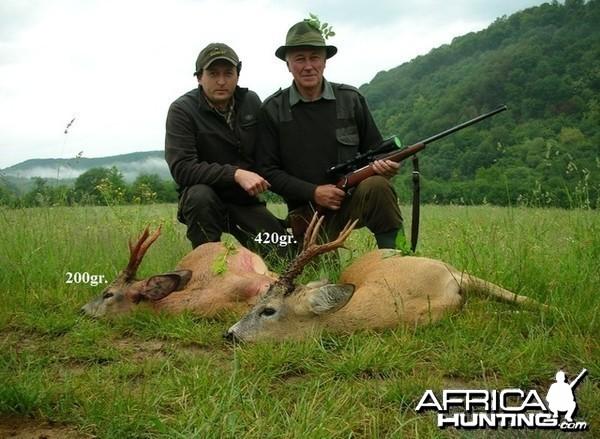 200gr. - 420gr. Roe Deer