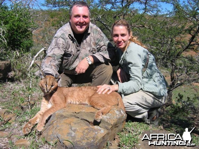 hunting Caracal in South Africa