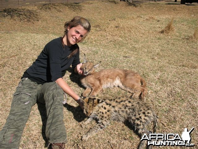 Hunting Caracal and Serval in South Africa
