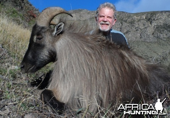 Hunting Tahr in New Zealand