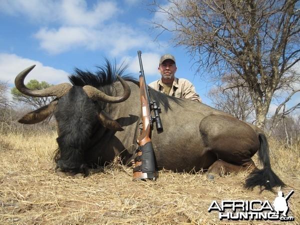 Old Bull Wildebeest