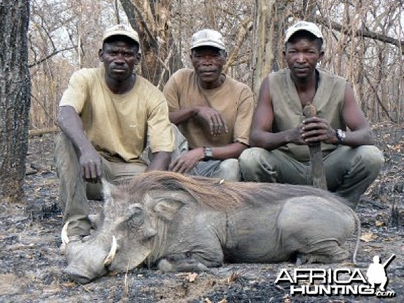 Hunting Warthog in CAR