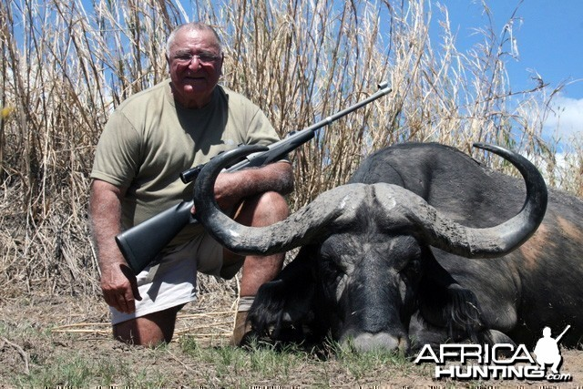 Buffalo Hunt in Tanzania
