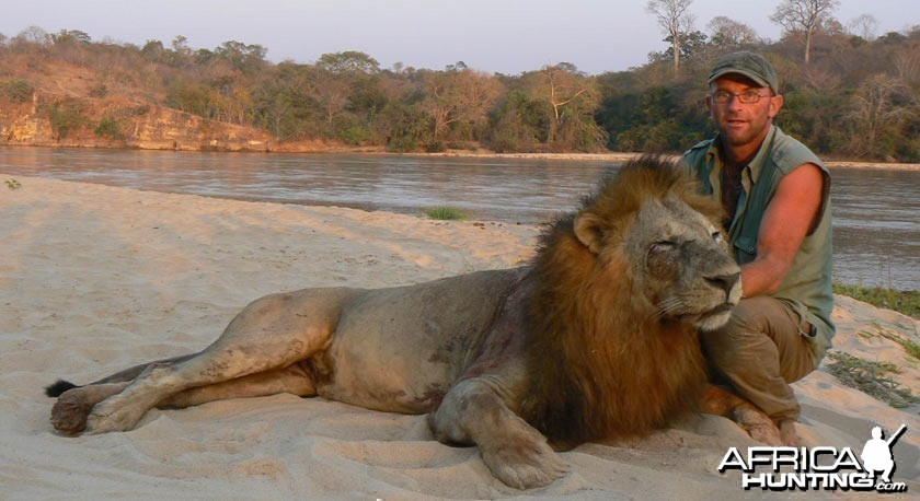 Big mane lion from Tanzania