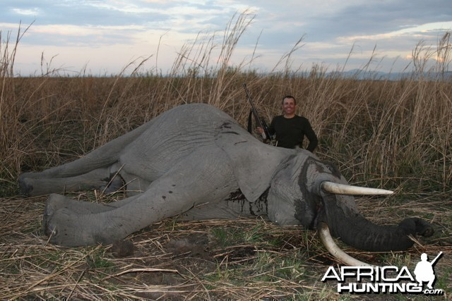 Elephant Hunting Tanzania