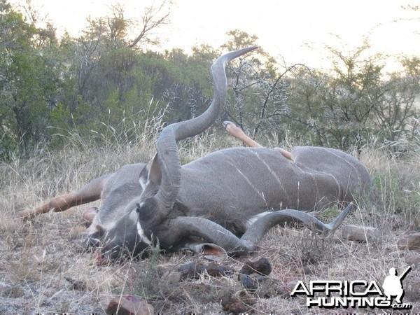 Kudu Free Range Mankazana Valley
