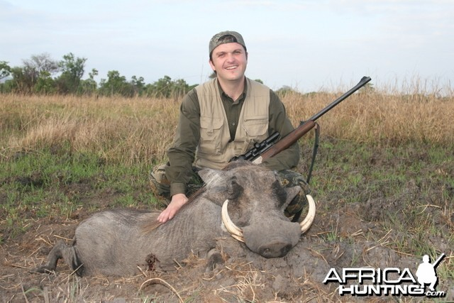 Warthog Tanzania