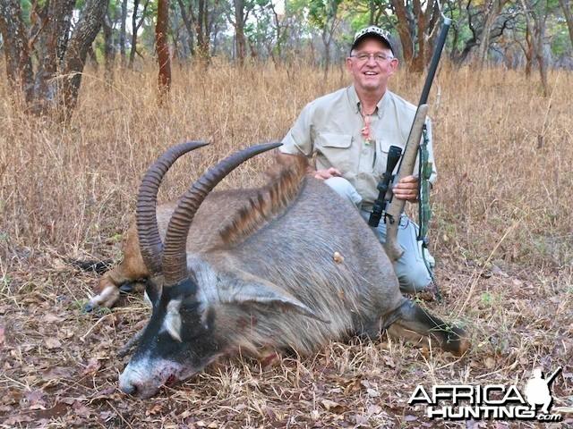Zambian Roan