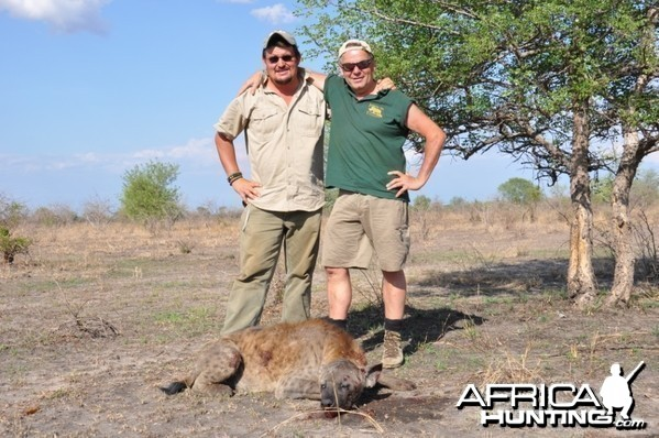 Hunting in the Selous Spotted Hyena