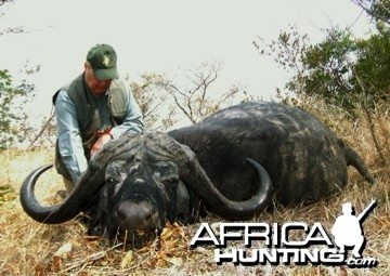 RSA Buffalo from the resent past, Spear Safaris