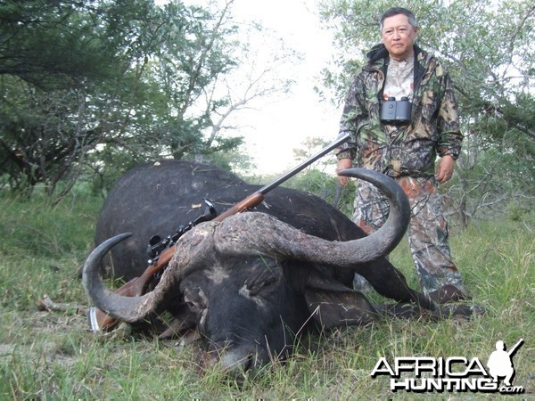 RSA Buffalo from the recent past, Spear Safaris