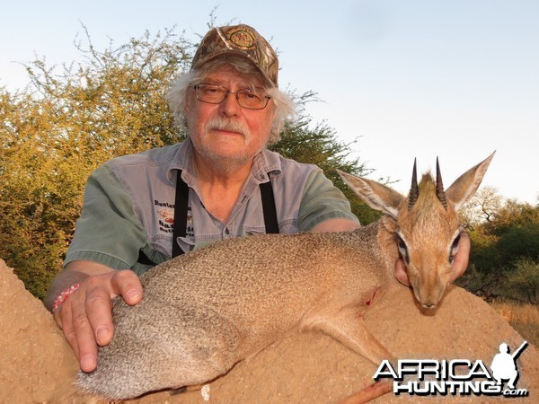Only found in  Namibia Damara Dik-Dik