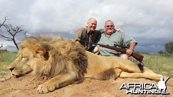 Lion - RSA Kalahari