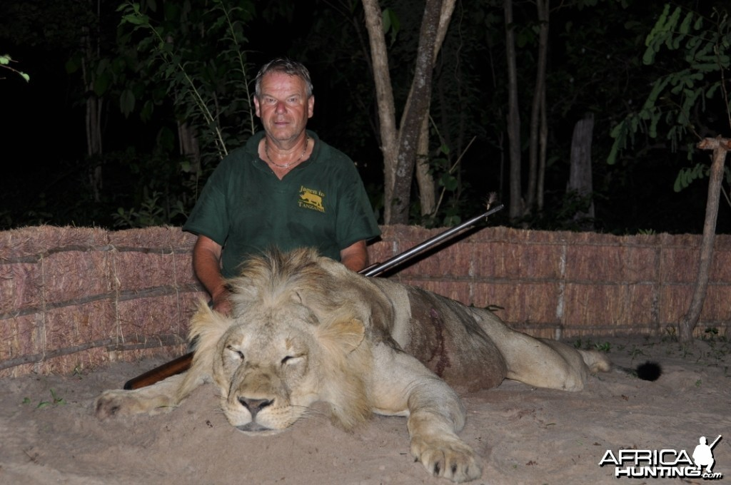 Hunting in the Selous Lion