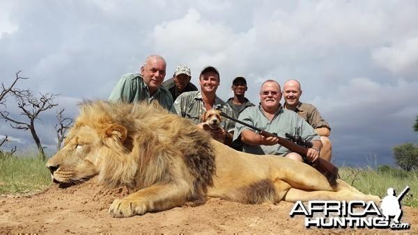 Kalahari lion team foto