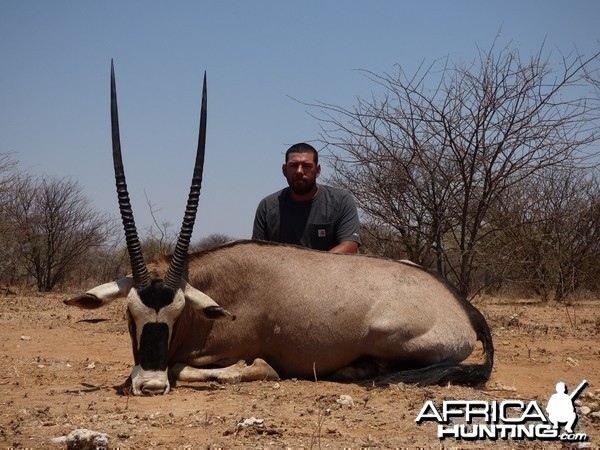 Gemsbok 38 inches
