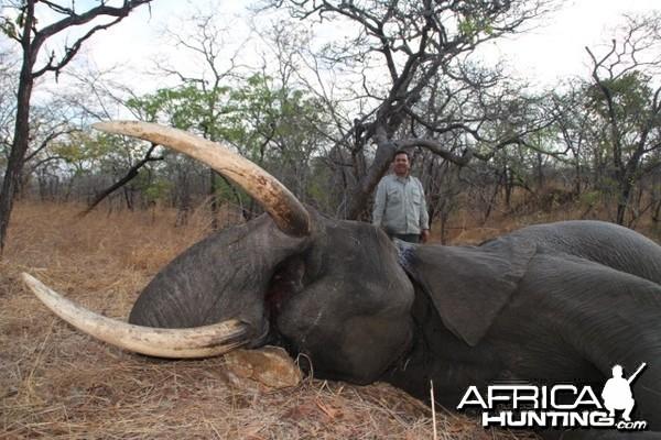 elephant Niassa Reserve Block R3