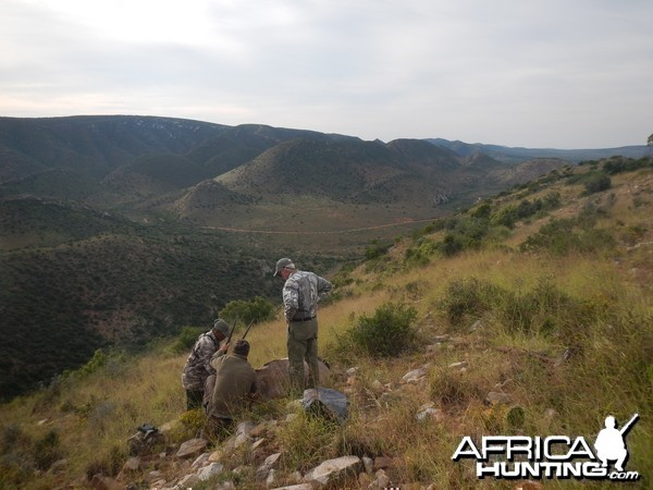 Gemsbok hill