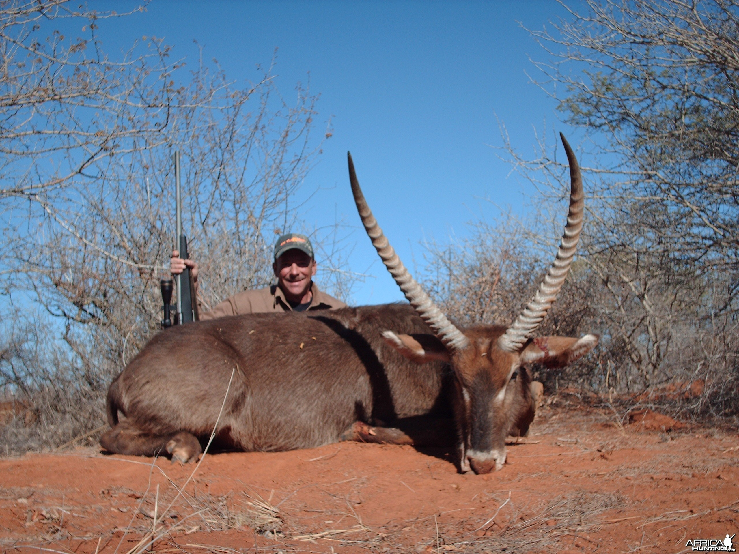 Waterbuck Limpopo 2007