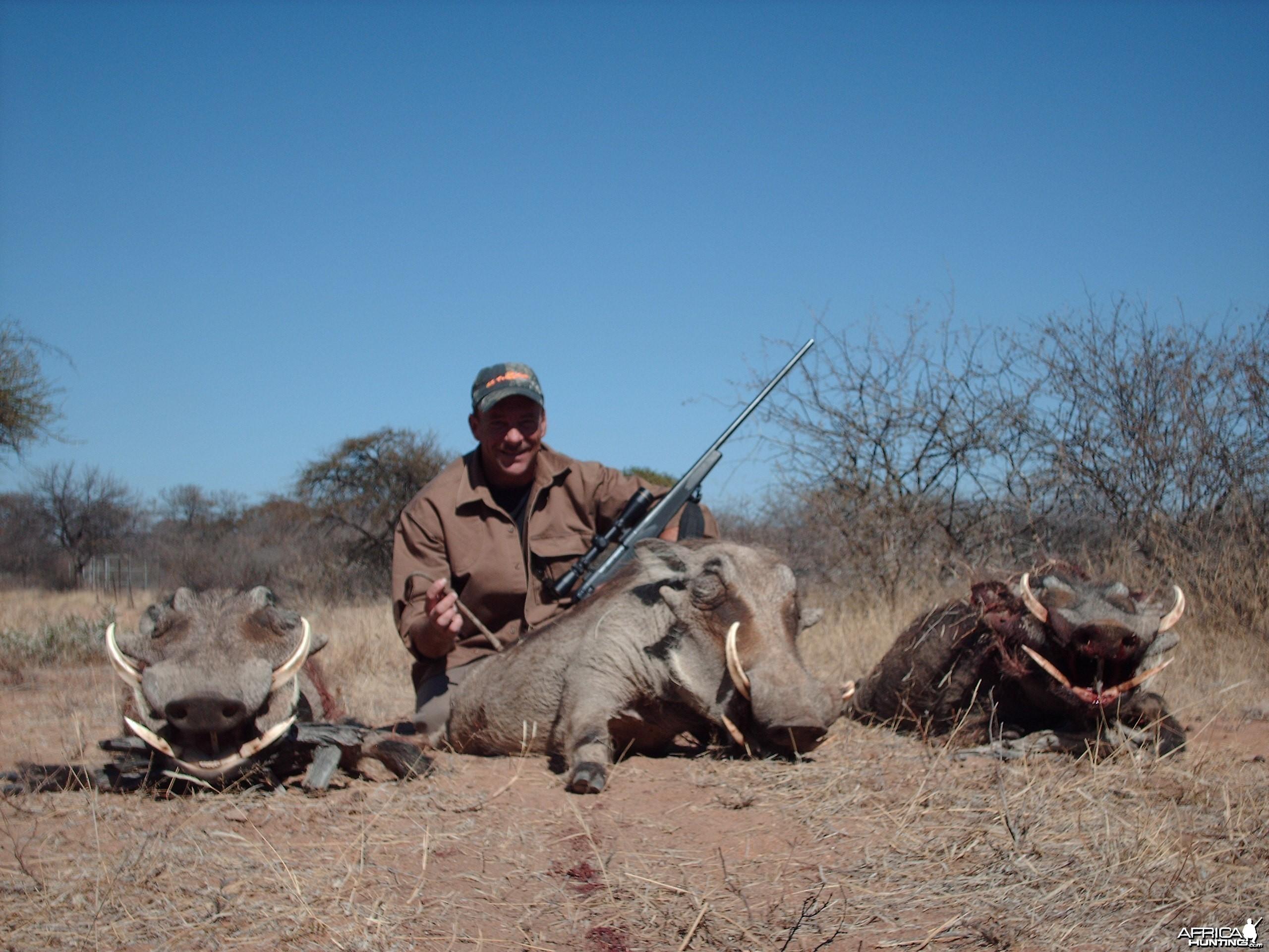 Warthogs Limpopo 2007