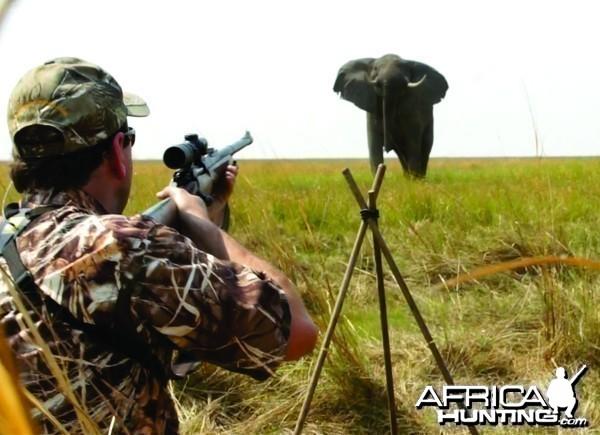 Elephant charge
