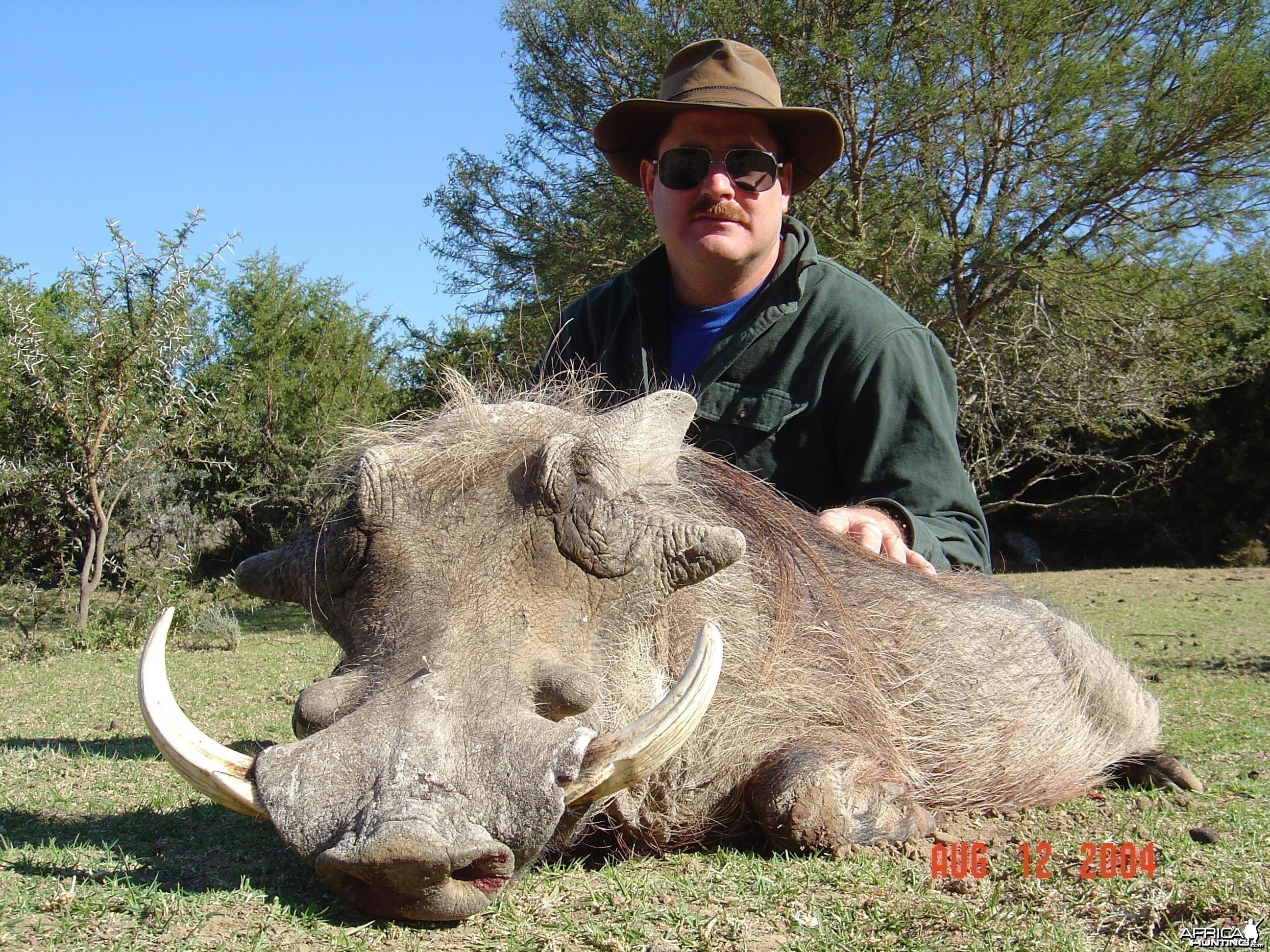 Old Warthog