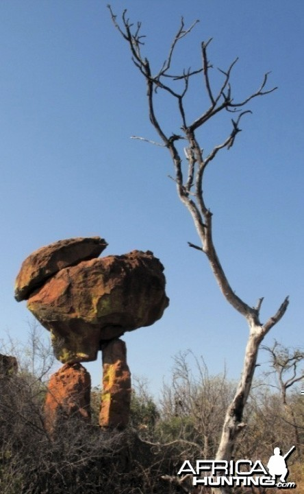 Waterberg Plateau in Namibia