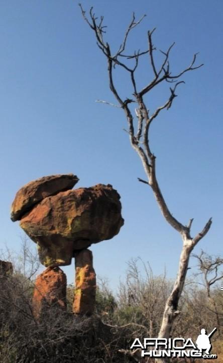 Waterberg Plateau in Namibia