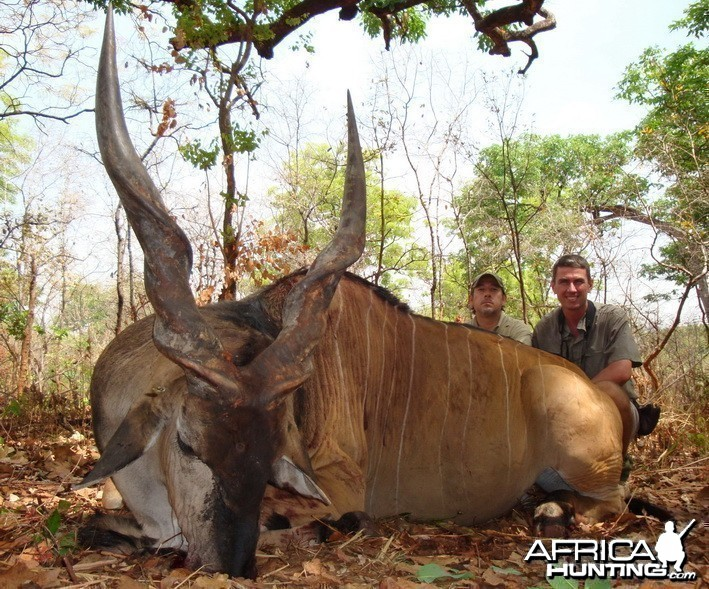 Hunting Eland Derby in C.A.R.