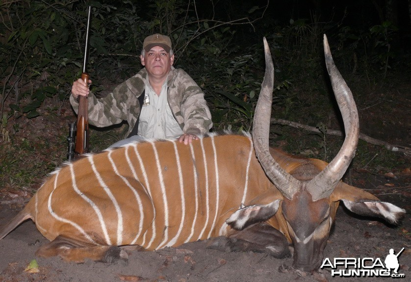 Bongo Hunt in C.A.R.
