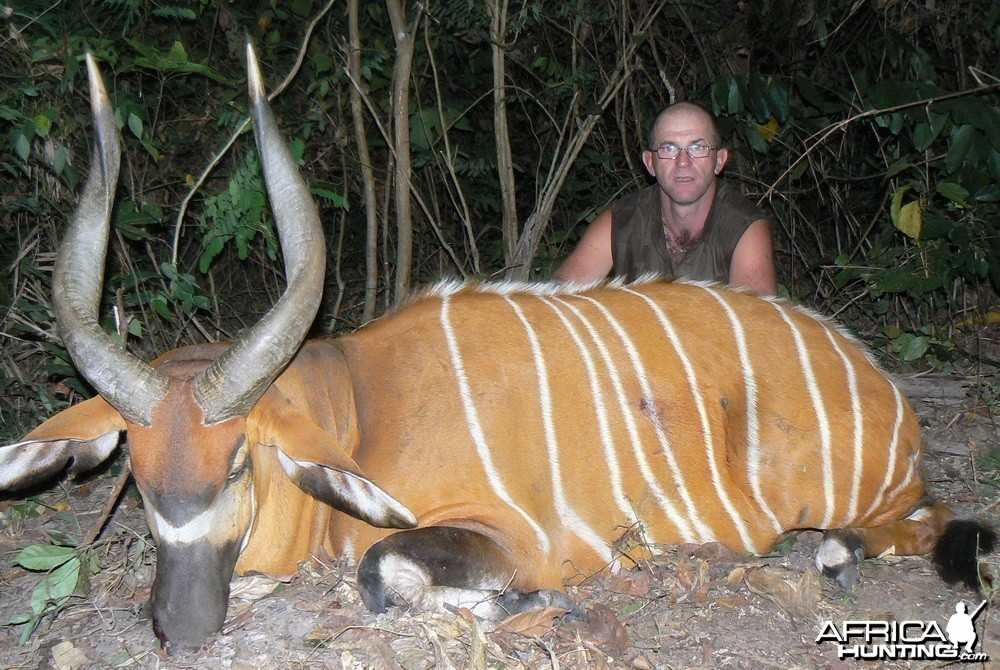 Bongo Hunting in C.A.R.