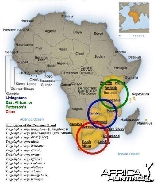 Map of Eland species